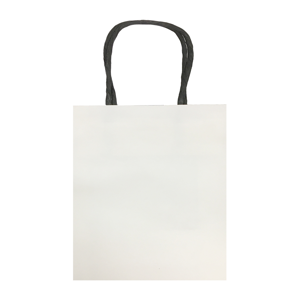 Small, White, Eco-Friendly Kraft Paper Bags