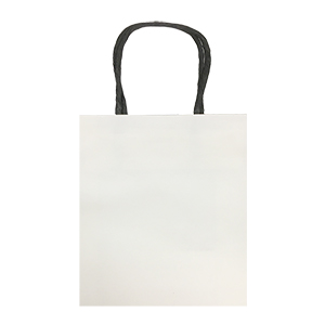 Related Product: Small, White, Eco-Friendly Kraft Paper Bags