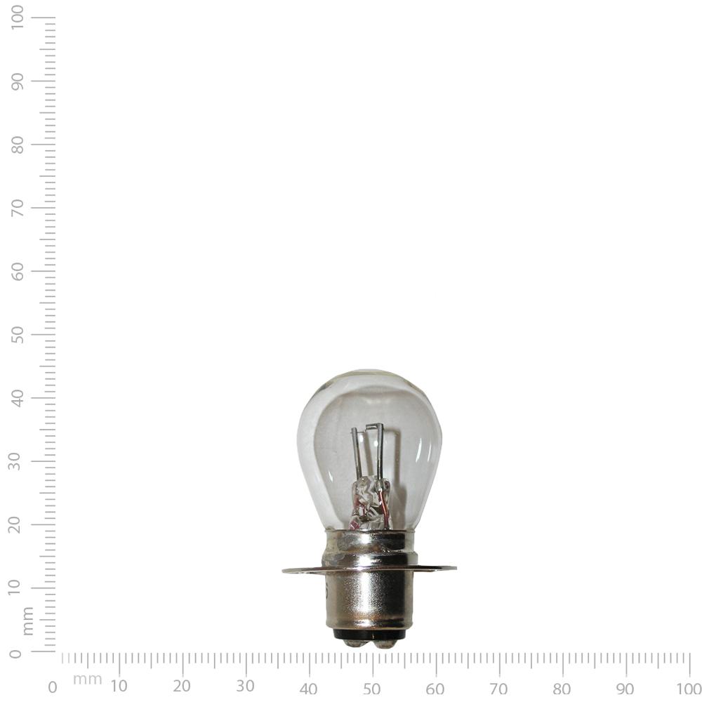Projector Bulb 1096