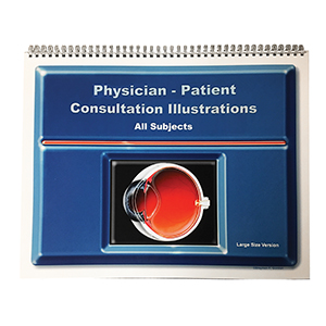 Related Product: Physician-Patient Consultation Illustrations - Large