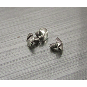 Eyewire Screw SW-2200